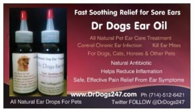 Dr Dogs Ear Oil Reviews